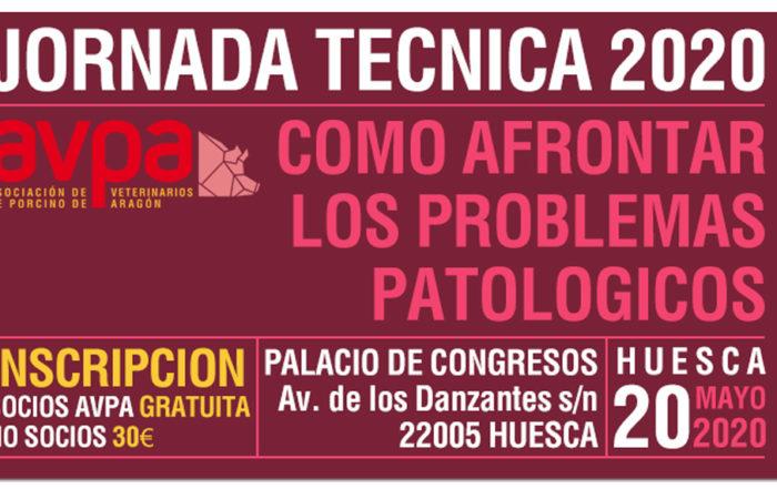 JORNADA TÉCNICA 2020, HUESCA.